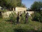 Alwadi-ira limpia el Molino de la Boca… 20 hombres solos… – Alcalá de Guadaíra