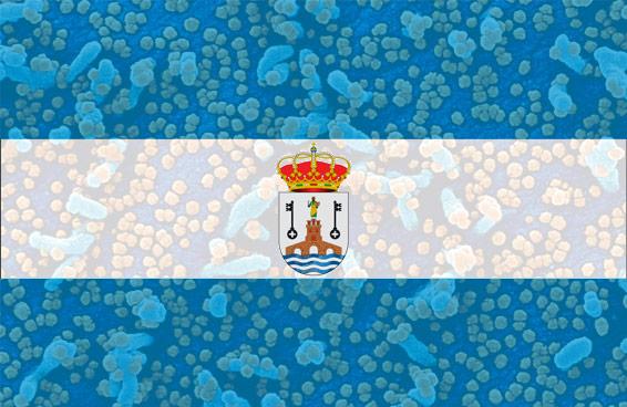 Alcalá de Guadaíra y el Coronavirus COVID-19 desde Enero 2020
